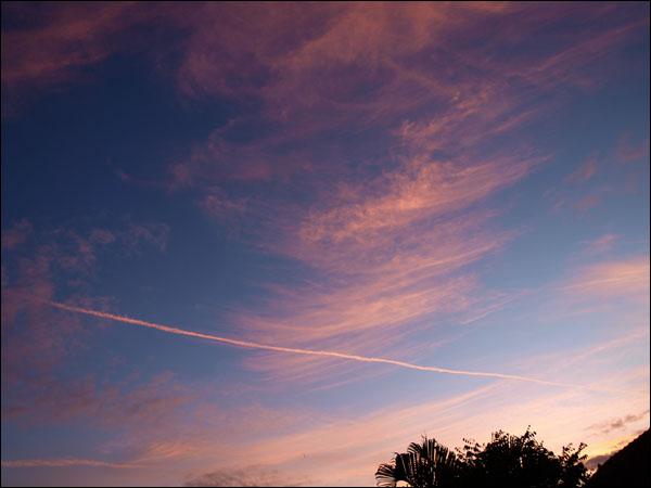 Sunset Sylph db